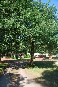 camping Arcachon