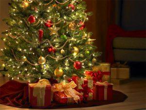 """""""Les Bonnes Vacances"""" vous souhaite un Joyeux Noël !"""