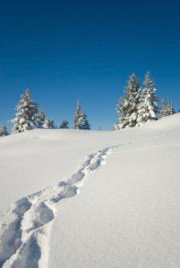 Séjours ski 2